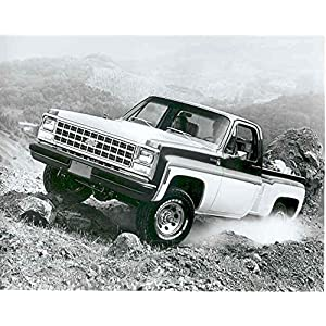 1980 Chevrolet Pickup Truck Photo Poster