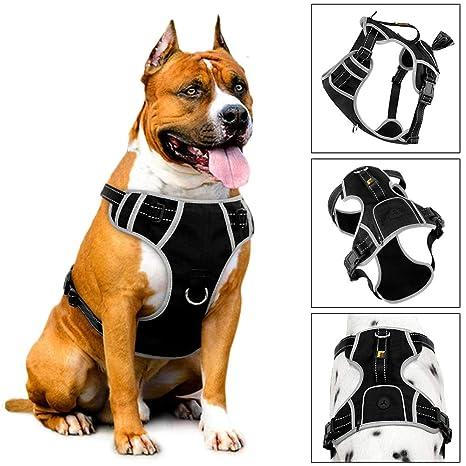 PLUTUS - Arnés para perro sin tirones con asa y soporte para bolsa ...