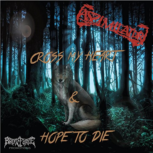 I Don't Belong Here - To Die Hope Cross My I Heart