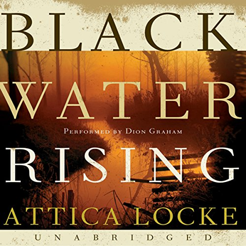 Bargain Audio Book - Black Water Rising