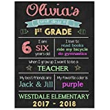 First Day of School Chalkboard Stats Sign Back to School Photo Prop Poster - Pink