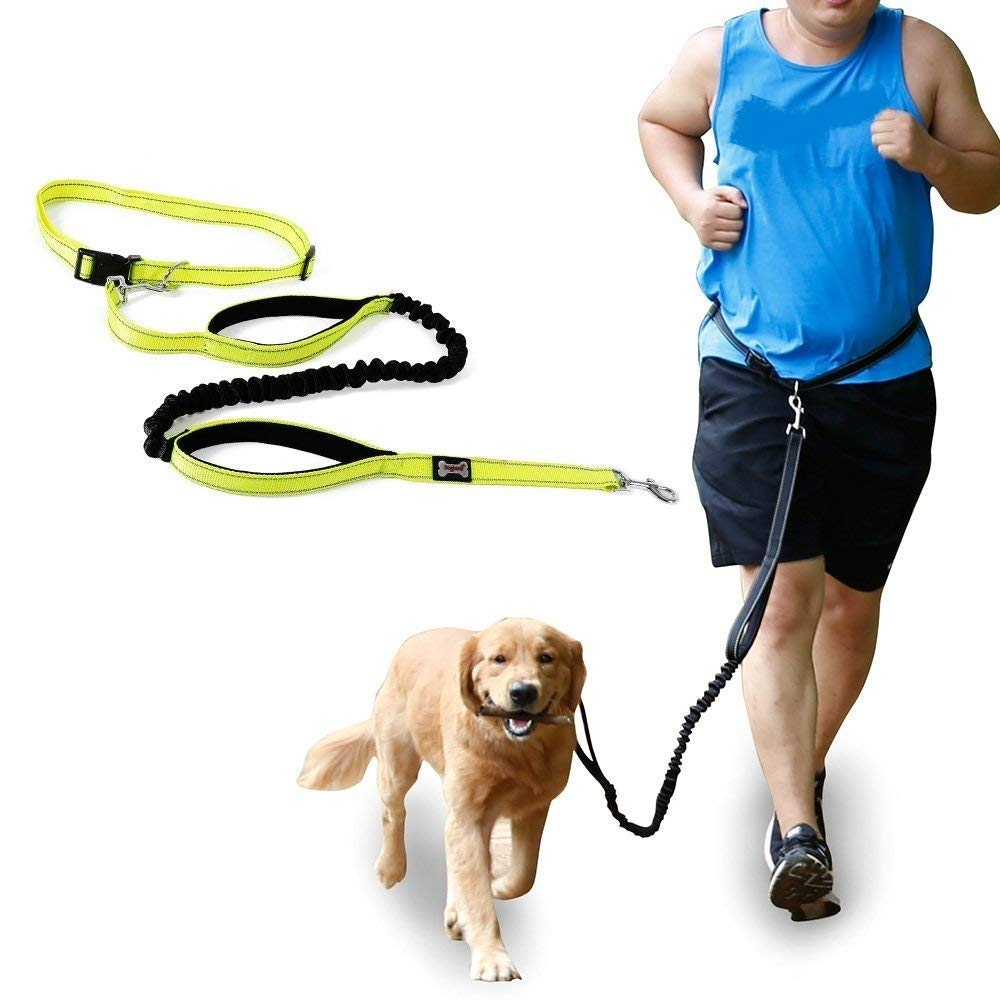 V.JUST Hands Free Dog Leash Nylon Reflecting Running Pet Leash for Bungee Walking Hiking
