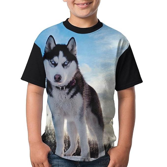 4502d0b73e6 Amazon.com  Animal Wolf Teenager T Shirt Teen Short Sleeve Baseball ...