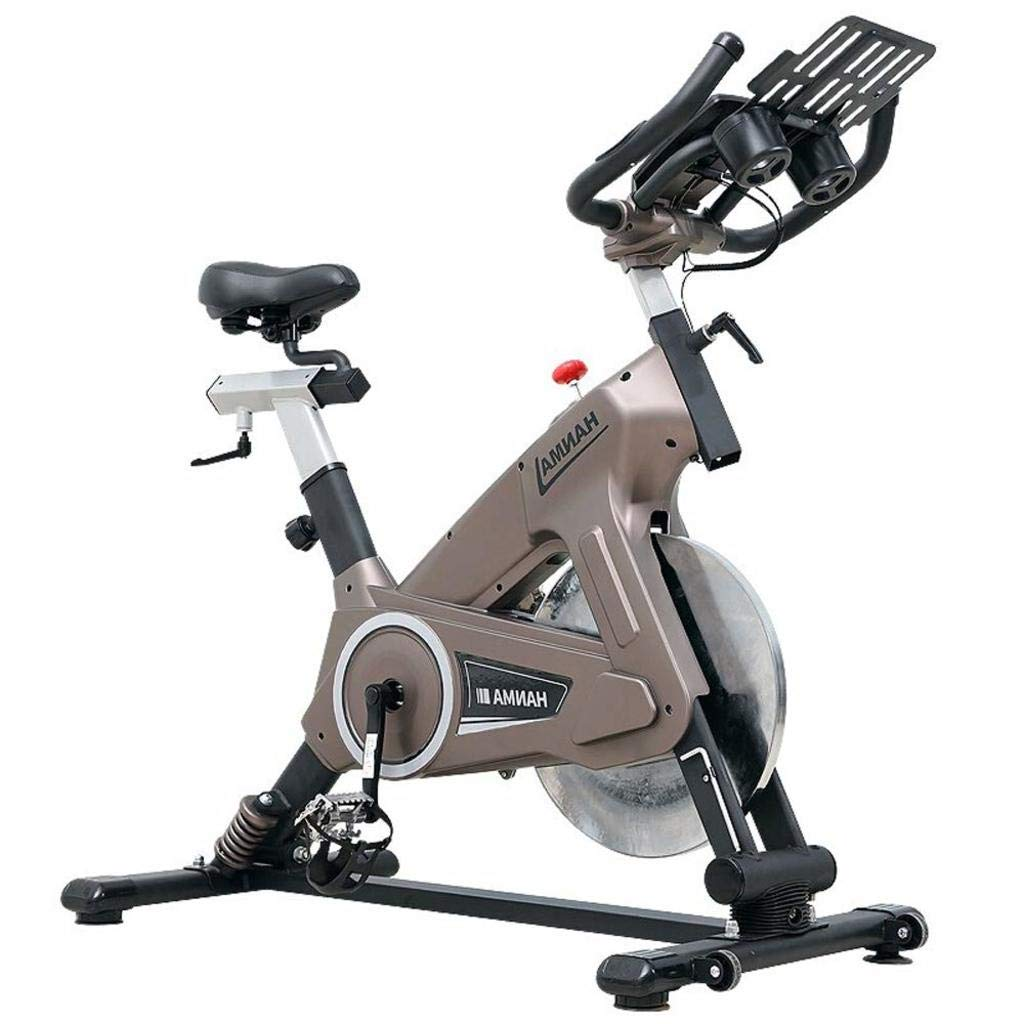 LE Luxus Ultra-leise Heim Indoor Heimtrainer Fitnessgeräte Abnehmen Fahrrad 2 Farbe Optional
