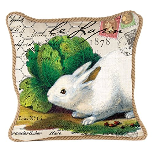 Michel Design Works Decorative Square Throw Pillow, 18 x 18-Inch, Bunnies
