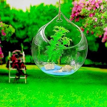 Skyeye Jarrón de Cristal Colgante Decorativo Decoración Hidropónica Decorativa de la Boda del Florero de la Bola de la Flor: Amazon.es: Hogar