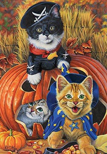 (Briarwood Lane Halloween Kittens Garden Flag Pirate Jack O'Lantern Count Cats 12.5