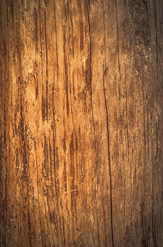 Home Comforts Laminated Poster Wood Board Nature Old Grain Weathered Texture Poster Print 24 x 36 by Home Comforts (Image #4)