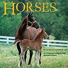 Horses: An Abridgement of Harold Roth's Big Book of Horses