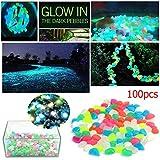 Cooltechstuff-Unico Luminoso Glow in the Dark Cobblestone Man-made pietra Ciottoli-100pcs/set, colori assortiti