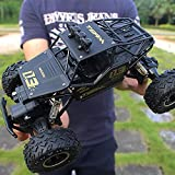 remote control big foot - RC Off-Road Vehicle 1:16 RC Car Big boy Toys Remote Control car Boys to Charge high-Speed Large feet Large Alloy Off-Road Four Wheel Black