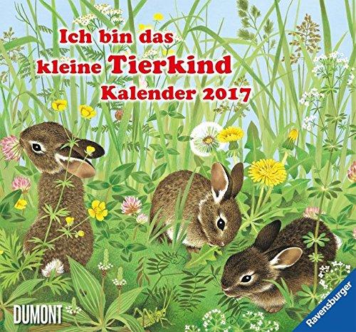 Kinderkalender - Ich bin das kleine Tierkind 2017 Wandkalender Format 38 x 35,5 cm, Ravensburger Buchverlag und DuMont Kalenderverlag