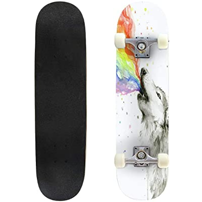"Cuskip Lytham Skateboard Complete Longboard 8 Layers Maple Decks Double Kick Concave Skate Board, Standard Tricks Skateboards Outdoors, 31""x8"" : Sports & Outdoors"