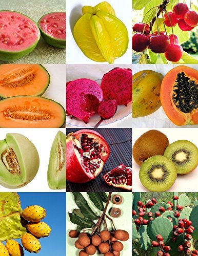Exotic Fruits Mix Sweet Edible Plant Tree Fragrant Tropical Fruit Seed -15 Seeds