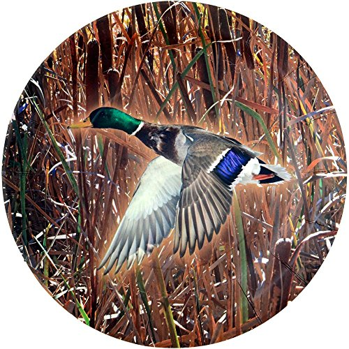 Duck Hunting Dinner Plate (Mallard Duck, 9