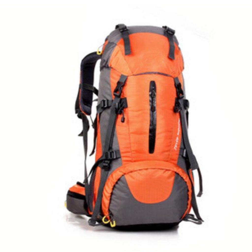 男女兼用 アウトドア プロフェッショナル 登山用バッグ ハイキング キャンプ バッグ レインカバーバックパック 50L B07HGXLNLS オレンジ Size