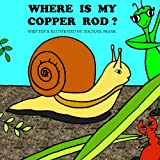 WHERE IS MY COPPER ROD? (The Adventures of Manti & Andy Book 6)