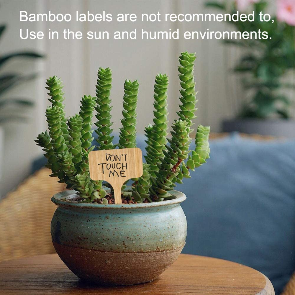 Bestechno Plant Labels Little Tool Gardening Accessories 6x10 cm 50pc Bamboo