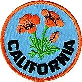 #9: Orange California Poppies with Logo on Blue Background - 2.5