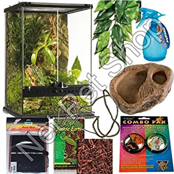 Exceptional Crested Gecko Starter Kit Photo