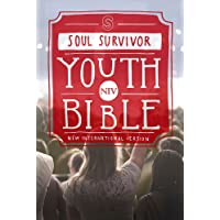 NIV Soul Survivor Youth Bible Hardback (New International Version)