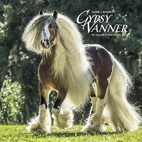 Gypsy Vanner Horse 2018 Calendar