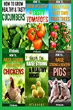 img - for 6 books in 1: Agriculture, Agronomy, Animal Husbandry, Sustainable Agriculture, Tropical Agriculture, Farm Animals, Vegetables, Fruit Trees, Chickens, ... Tomatoes, Cucumbers (How To Do Agriculture) book / textbook / text book