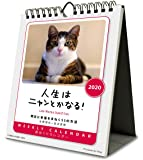 ウイング 人生はニャンとかなる! 2020年 カレンダー CL-400 卓上 猫