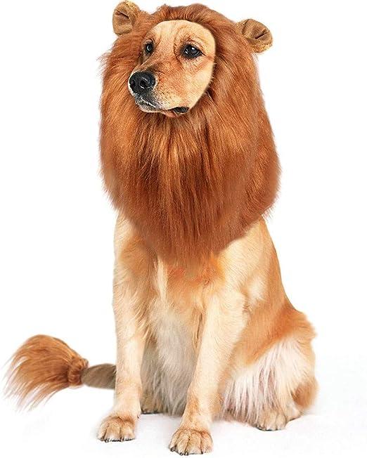 HpyAlwys Peluca de león para Gatos y Perros pequeños, Divertida Mascota Gato Perro Disfraz para Halloween Navidad Festival Disfraces, Furry Mascota Ropa Accesorios: Amazon.es: Productos para mascotas