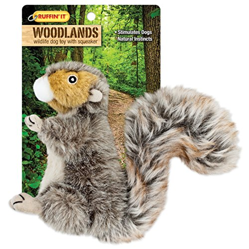 Westminster Pet Products Woodlands Plush Squirrel Dog Toy, Small -
