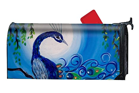 7ee0540a5bc0 Amazon.com  Verna Christopher Night Peacock Mailbox Makeover ...