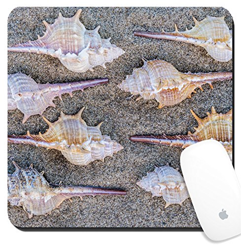 Luxlady Suqare Mousepad 8x8 Inch Mouse Pads/Mat design IMAGE ID 21495900 Arrangement of eight spiny seashells from marine snails or gastropods forming a repeat pattern