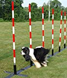 Dog Agility Weave Poles with Adjustable Spacing (12 Poles)