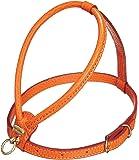 Petego La Cinopelca Tubular Calfskin Dog Harness with Pebble Grain Finish