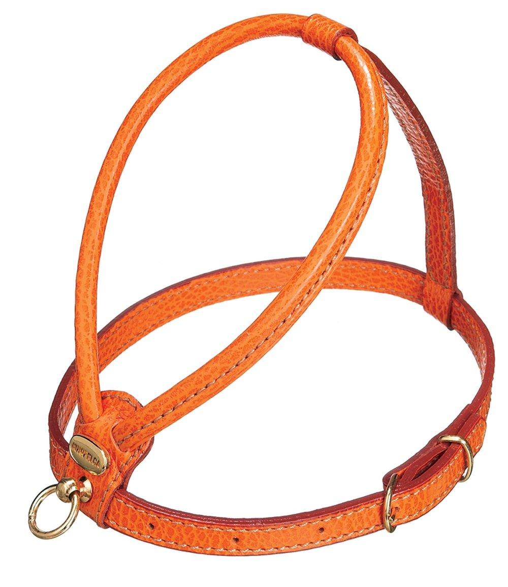 Petego La Cinopelca Tubular Calfskin Dog Harness with Pebble Grain Finish, Orange Small