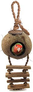 SunGrow Bird House with Ladder, Nesting Home and Bird Feeder, Mini Condo for Avians, Coco Texture Encourage Foot and Beak Exercise, 100% Raw Coconut Husk, Durable Habitat with Hanging Loop
