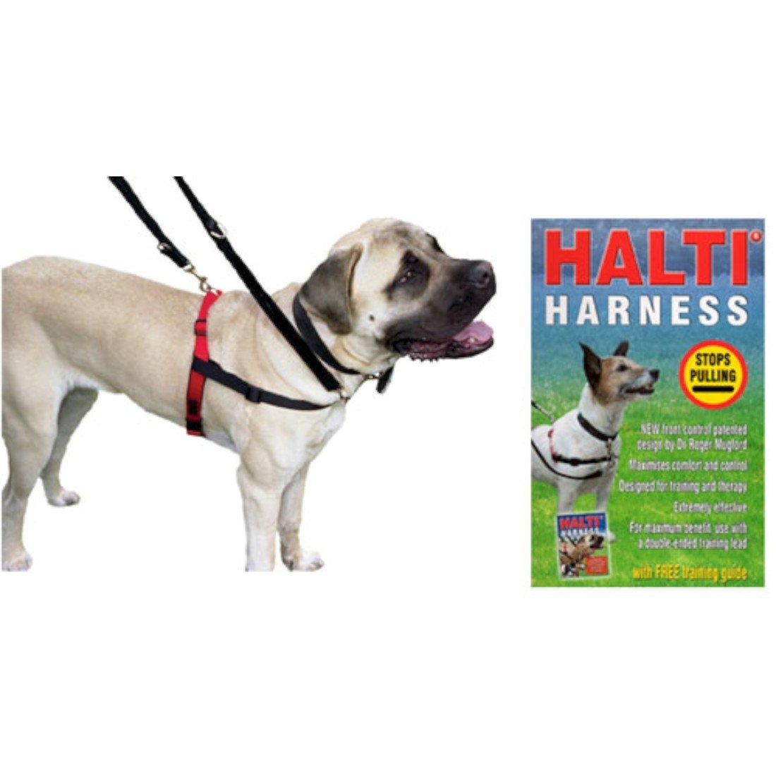 Halti Arnés del Perro Pequeño Libre guía de formación diseñado por ...