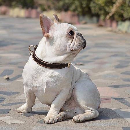 medianos y Grandes Perros peque/ños Mihqy Collar de Perro de Cuero Personalizado,Placa de Identificaci/ón Grabada con Nombre y n/úmero de Tel/éfono Grabado con l/áser,Ajustable