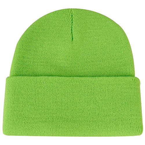 JIBIL Winter Plain Beanie Cap, Unisex Classic Warm Soft Knit Cuff Christmas Beanie Cap With Lining Flo Green Green Day Black Beanie