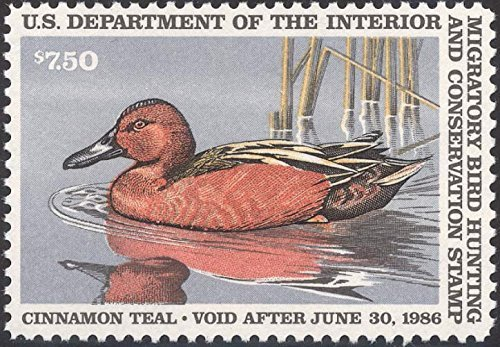 USPS Scott RW52 $7.50 Cinnamon Teal Federal Duck Stamp Mint Very Fine. Never Been Hinged.