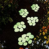Cheap HOMPO 100pcs Glow in the Dark Garden Pebbles Stones for Outdoors & Walkways & Fish Tank Decoration-Green