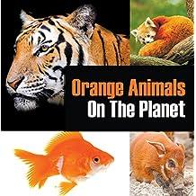 Orange Animals On The Planet: Animal Encyclopedia for Kids (Colorful Animals on the Planet Book 3)