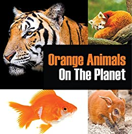 Orange Animals On The Planet: Animal Encyclopedia for Kids (Colorful Animals on the Planet Book 3) by [Professor, Baby]