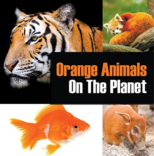 Orange Animals On The Planet: Animal Encyclopedia for Kids (Colorful Animals on the Planet Book 3) by [Professor, Baby]