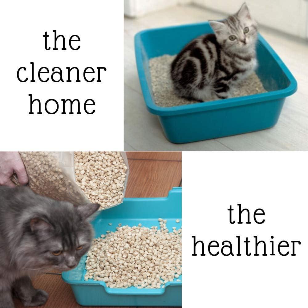 Golden Pine Arena para gatos con aroma a pino, 16 kg, antibacteriana, desechable e hipoalergénica, gránulos finos con control de olor, fórmula desodorante combinada con 4 pelotas de juguete Trixie Nub: Amazon.es: