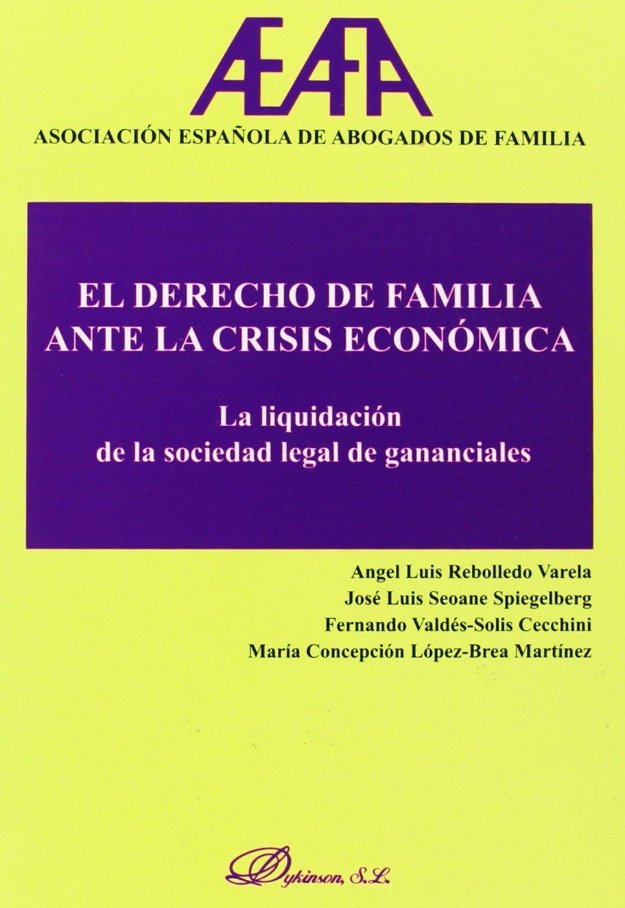 El derecho de familia ante la crisis económica. La liquidación de la sociedad de gananciales: Amazon.es: Asociación Española de Abogados de Familia: Libros