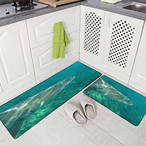 Doocilsh Kitchen Rugs,Kitchen Rugs Washable for Women and Men,17X48+17X24Inches Shark Grey Nurse Spotted Tooth Taurus South Africa Ocean or Ragged Carcharias Cape Infanta Indian Kitchen Rug