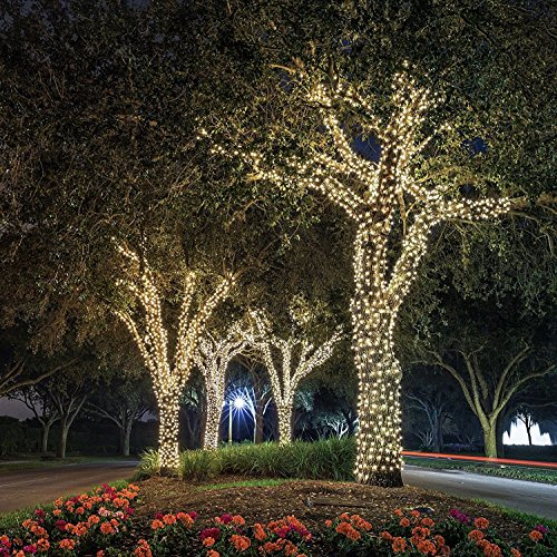 Christmas Lights - Ora LED Solar Powered Waterproof String Lights, 100 LED's 55 feet