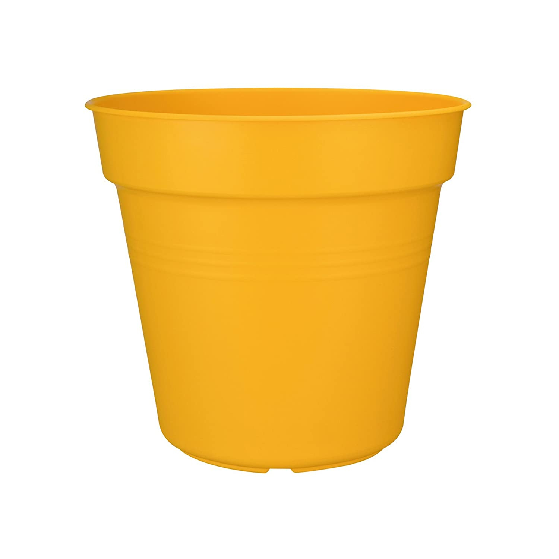 Intensiv Gelb