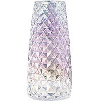 FuTaiKang Jarrón decorativo de cristal transparente de 22 cm, florero moderno para decoración del hogar, oficina o…